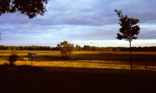 Wetlands to cornfields.